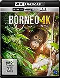 Borneo Faszination Asien (4K kostenlos online stream