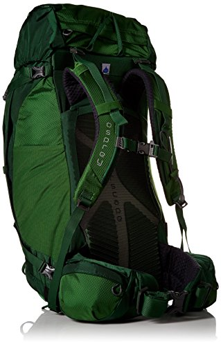 Osprey Kestrel 38 Hiking Backpack Vert
