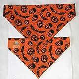 Premier Dog Hunde Kürbis & Fledermäuse orange Hund Bandana–gleitet auf Ihre Hunde Halsband