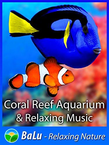 Aquarium Hd (Coral Reef Aquarium & Relaxing Music - BaLu - Relaxing Nature [OV])