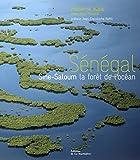 Sénégal - Sine-Saloum la forêt de l'océan