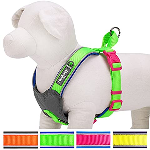 Blueberry Pet Soft & Comfy Summer Hope 3M Reflective Harness Vest, Chest Girth 47cm-53cm, Neck 45cm, Fluorescent Green Padded Dog Harness, Ultra-soft No Pull