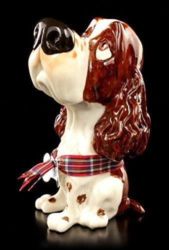 Hunde Figur - Springer Spaniel Ben - Little Paws | Lustiges Geschenk Comic Look (Spaniel Hund-figur Springer)