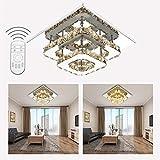 ETiME Deckenleuchte Modern Deckenlampe LED Edelstahl Wandleuchte Kronleuchter für Flur, Gang, Balkon, Schlafzimmer (24W Bernsteingelb Dimmbar)