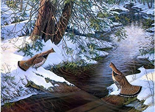 dxycfa DIY 5D Diamant MalereiZeichnung Tiere Ente Schnee Fluss Ölgemälde von Anzahl Kreuzstich Nähen Kunsthandwerk Home Yhall Dekoration -