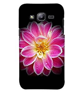 GADGET LOOKS PRINTED BACK COVER FOR SAMSUNG GALAXY ON8 MULTICOLOUR