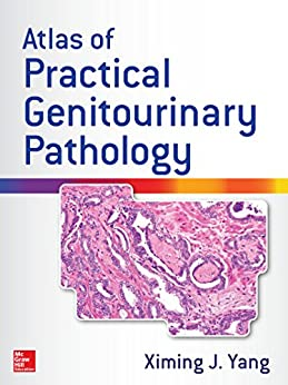 Atlas Of Practical Genitourinary Pathology por Ximing James Yang epub