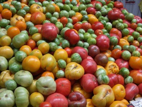 Famous Hungarian purple sweet tasty Tomato \