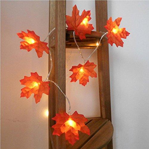 DOLDOA Ahornblatt Batterie-Kasten Lichterkette für Haus, Hochzeit, Weihnachten, Erntedankfest (2M – 40er LED, Rot)