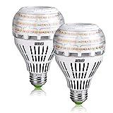 Lampadine Led Luce Calda E27 27W-SANSI Lampadina Led Equivalenti a 250W Lampadine Alogene 3000K Non Dimmerabile Super Luminoso 4000lm Lampade Risparmio Energetico,Pacco da 2
