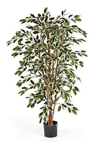 artplants Set 'Kunstbaum Ficus Benjamini + Gratis UV Schutz Spray' – Künstlicher Ficus Avellino, Echtstämme, grün-weiß, 120 cm