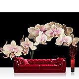 Vlies Fototapete 300x210 cm PREMIUM PLUS Wand Foto Tapete Wand Bild Vliestapete - CREAMY ORCHID - Orchidee Blumen Blumenranke Rosa Pink Natur Pflanzen - no. 104