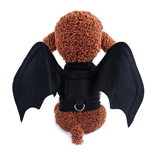 Lustige Kostüm Einfache - DuYanDY Halloween Haustier Fledermaus Flügel Kostüm Spaß lustige einfache Brust Vier Jahreszeiten universal, schwarz,M