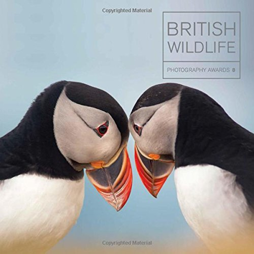British Wildlife Photography Awards: Collection 8 thumbnail