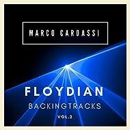 Floydian Backing Tracks, Vol. 2