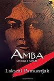 AMBA Sebuah Novel