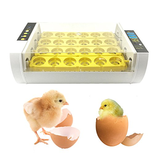 Zaote Inkubator, Motorbrüter Brutmaschine Hühner, Brutapparat 24 Hühnerei