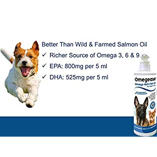 100% pure omega 3, 6 & 9 fish oil for dogs and cats - best for skin, coat, joint, heart & brain health. soothes itches. from wild caught fish - better source of dha & epa than farmed scottish salmon oil. 100% Pure Omega 3, 6 & 9 Fish Oil for Dogs and Cats – Best For Skin, Coat, Joint, Heart & Brain Health. Soothes Itches. From Wild Caught Fish – Better Source of DHA & EPA Than Farmed Scottish Salmon Oil. 51l72OO263L