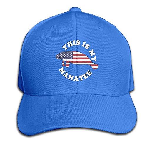 kslae Amerikanische Flagge Manatis Hysteresen-Sandwich-Kappe Schwarze Baseballmütze-Hüte Einstellbare emaillierte Trucker Cap