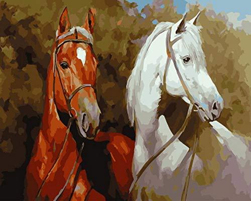 GCQBLM Malen nach Zahlen malen nach Zahlen für wohnkultur ölgemälde braun und weißes Pferd 16x20 Zoll Rahmenlos