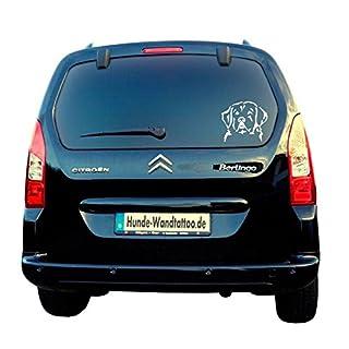 Slovensky Cuvac Head Car Sticker ATK0205Car Sticker Caravan Campervan Amberdog®–The Original