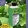 Ginkgo-Dünger Ginkgobäume düngen, Premium Flüssigdünger als NPK Volldünger von GREEN24 - Du und dein Garten