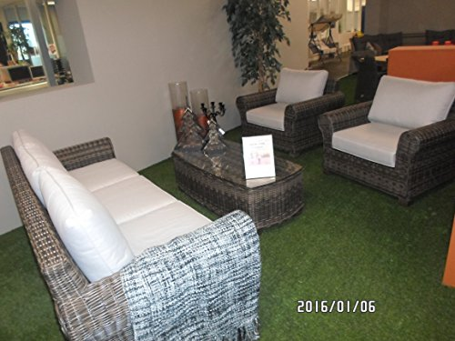 Lesli Living Loungeset Excellent Ensemble de 4 pièces Comprenant 2 fauteuils 1 Banc 1 Table avec Plateau en Verre de qualité supérieure