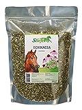 Stiefel Echinacea 500g Tüte für Pferde für Immunsystem Abwehrkräfte und unterstützend bei Genesungsprozessen und zur Vorbeugung