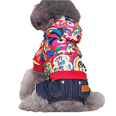 DUOZE Herbst Und Winter Tide Marke Cool Hund Beine Monster Kleidung Anzüge Jeans Teddy Bichon