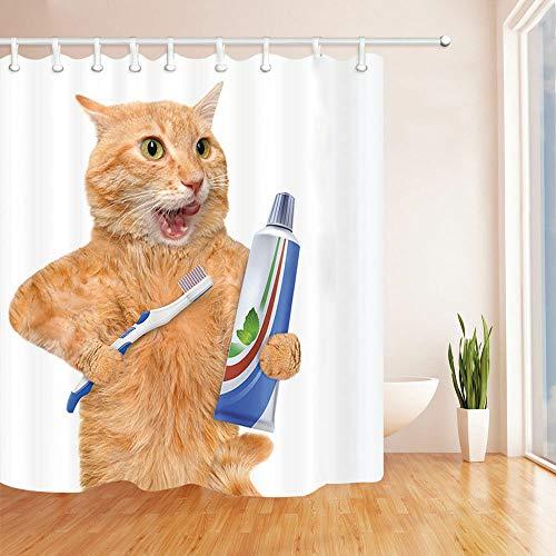 dsgrdhrty Katze, die einen Zahnbürste lt Wasserdichter Badvorhang antibakteriell tragbar und waschbar
