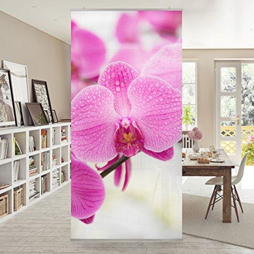 Flächenvorhang Set Nahaufnahme Orchidee 250x120cm | Schiebegardine Schiebevorhang Raumtrenner Vorhang Raumteiler Gardine Paravent Wandbild...