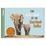 Postkarten-Buch »Eine dicke Haut ist ein Geschenk Gottes«: 12 heitere Tierpostkarten - Jean Paul
