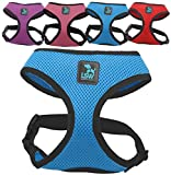 Best dog harness - No Pull Small Dog - Pet Harness Review