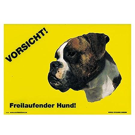 Schecker Warnschild Boxer hell m.dk.Maske Gr. Vorsicht freilaufender Hund Hinweisschild Türschild Warnschilder