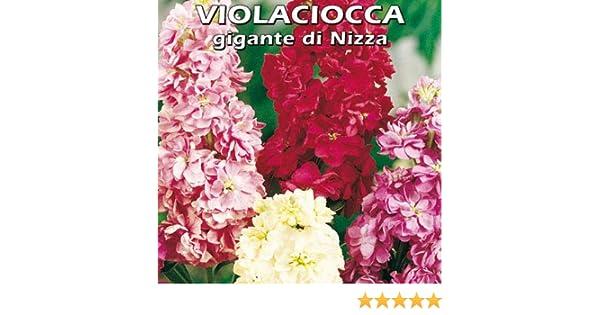 #1 MagiDeal Vetro Vento Carillon Campana Gatto Casa Giardino Pensile Arredamento Regalo Fai da Te