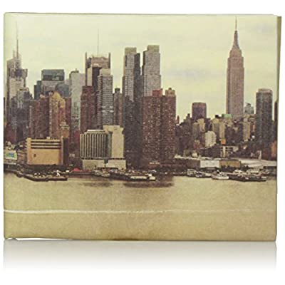 Dynomighty Men's Mighty Wallet Nyc, Multi, One Size