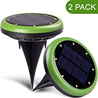 HIWILL Outdoor Solar Lights - Solar Powered Lights - Solar Lights for Garden Driveway - 2 Pack / Green