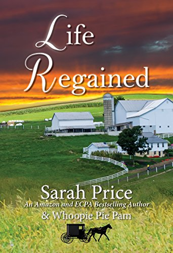 Life Regained An Amish Friendship Series Book 1 English Edition