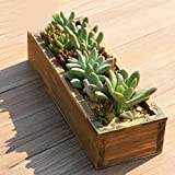 New Creative Rectangle Coated Iron Flowerpots Desktop Storage Tool Planting Succulents Utility Herramientas Sky blue