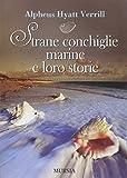 Strane conchiglie marine e loro storie