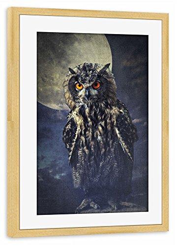 poster-avec-cadre-75x50-cm-animaux-hibou-dans-le-clair-de-lune-affiche-avec-le-cadre-pin-semi-lustre
