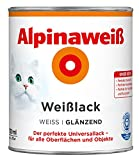 AP Alpinaweiß Weißlack GL
