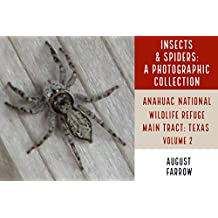 Insects & Arachnids: A Photographic Collection: Anahuac National Wildlife Refuge - Main: Anahuac, Texas - Volume 2 (Arthropods of Anahuac: Main) (English Edition)