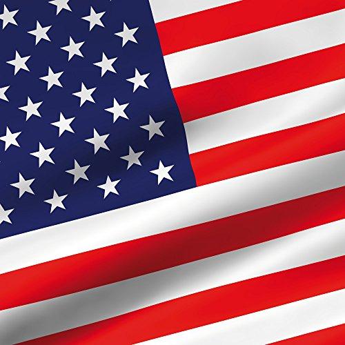 Apple iPhone 5s Housse Étui Protection Coque USA Drapeau Amérique Drapeau Sac Downflip noir
