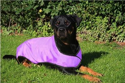 Prestige Cool Coat for Dogs, L, Purple by PREXV