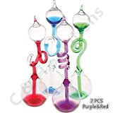 Colorful Office Thinking Hand Boiler, Glass Science Energy Transfer, Children Science Experiment, Love Birds Color Meter Hand Boiler, 2 Pcs (Purple&Red) By C&H