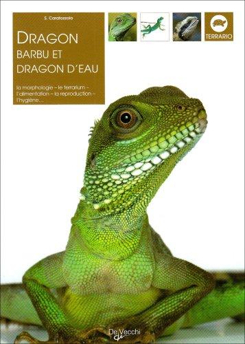 dragon-barbu-et-dragon-deau