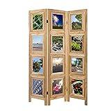 Homestyle4u 1143, Foto Paravent Raumteiler 3 teilig, Fotowand Holz, Natur
