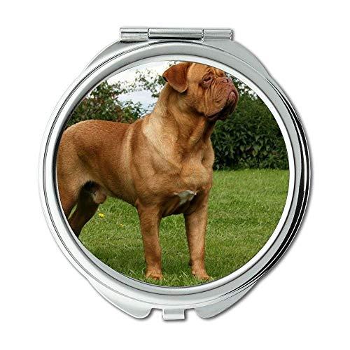 Spiegel, Compact Spiegel, Taco Hund doga terier zasnezena hora, Taschenspiegel, 1 X 2X Lupe