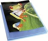 EXACOMPTA 5762E - Un Porte vues personnalisable Chromaline 120 vues 21x29,7 cm avec couverture polypro semi-rigide BLEU